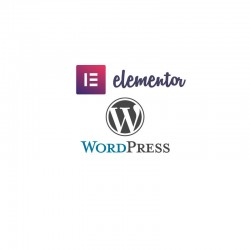 formation Elementor/Wordpress